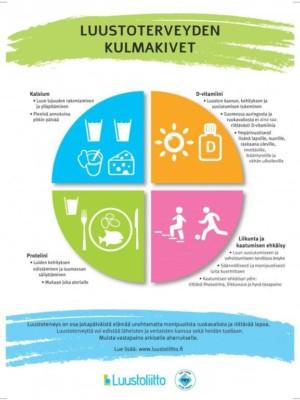 Luustoterveyden kulmakivet