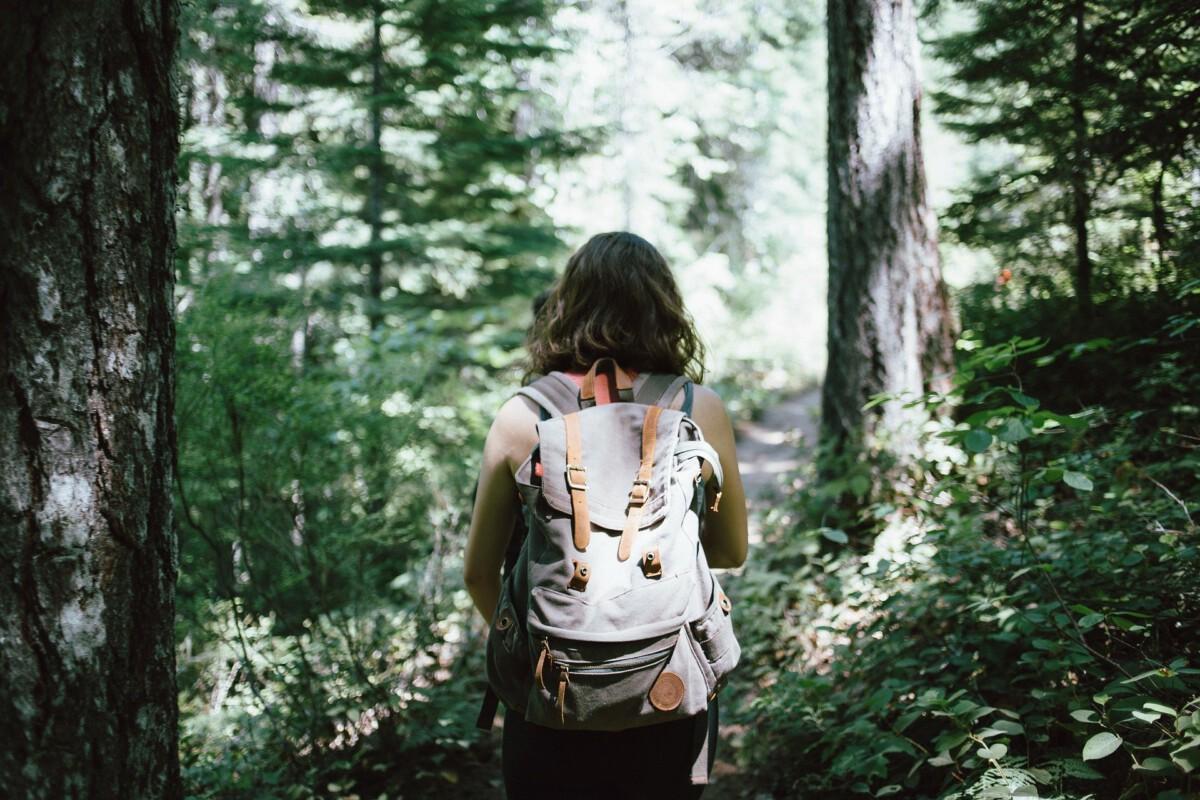 Kävelyllä metsässä